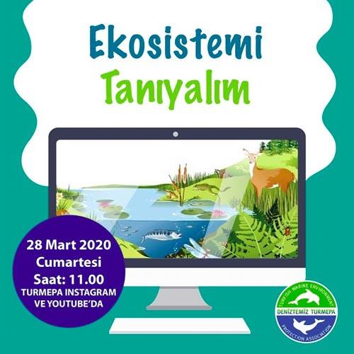 Ekosistemi Tanıyalım Video Eğitimi