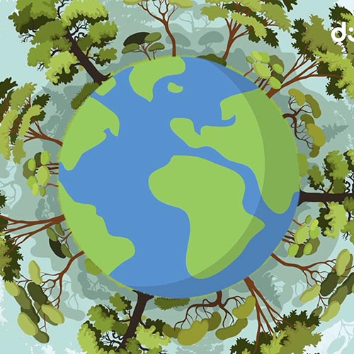 Orman Nedir? Video Eğitimi