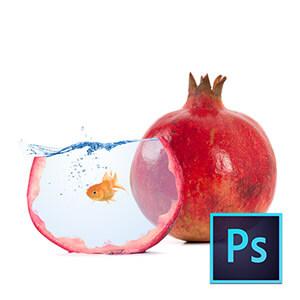 Photoshop ile Basit Manipülasyon Çalışmaları Video Eğitimi