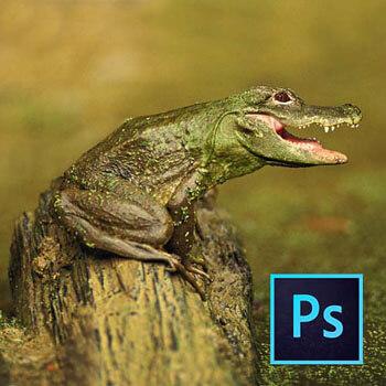 Photoshop ile Manipülasyon Yapımı Video Eğitimi