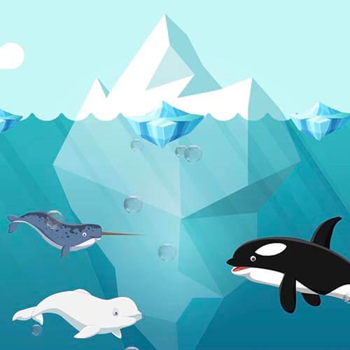 Suyun Varlığı Video Eğitimi